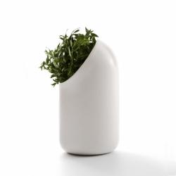 Vase Moustache Ô Vase